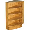 Угловой шкаф радиальный № 21 (правый или левый)