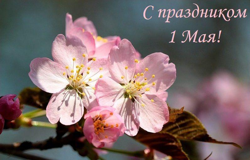 С майскими праздниками!